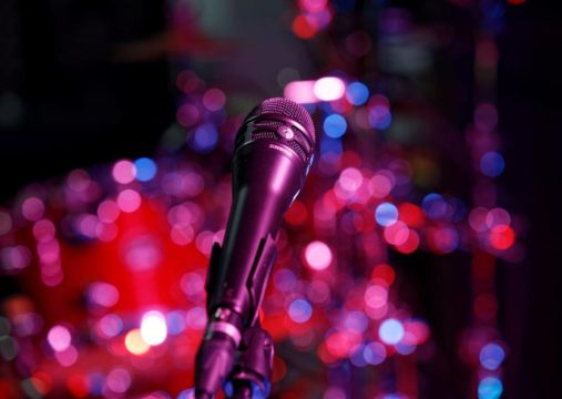 Tonaufnahme.ch Shure KSM8 Vocal-Mikrofon - welches Vocal Mikrofon passt zu dir?